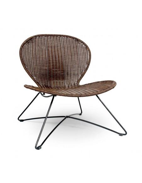 troy-scaun-maro